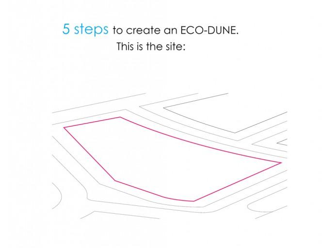 ?איך יוצרים גן אקולוגי